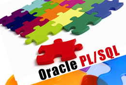 O11gPLSQL. Oracle Database 11g: Основы PL/SQL